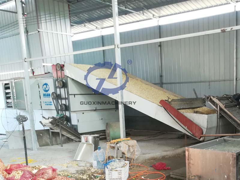Garlic slices dry processing plant pictures