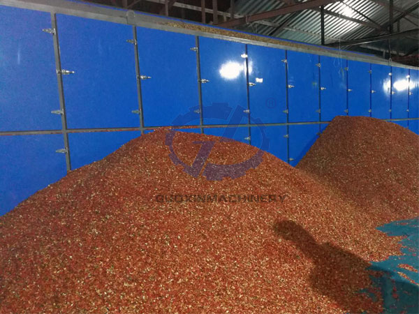 watermelon seed drying equipment