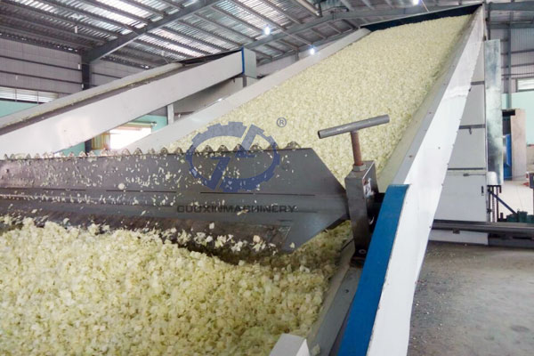those pictures about dehydrated vegetable production line from Vietnam