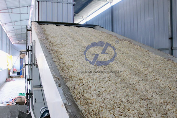 Dehydrated garlic processing