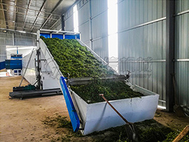 Moringa Leaf Dryer