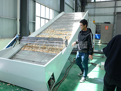 Potato Chips Dryer Machine