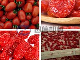 Cherry tomatoes drying machine