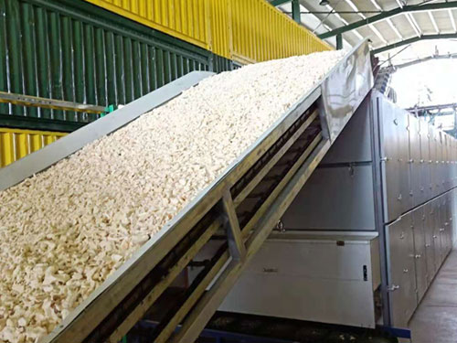cassava drying equipment