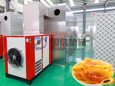 Papaya Drying Machine