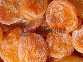 Apricot & Plum drying machine