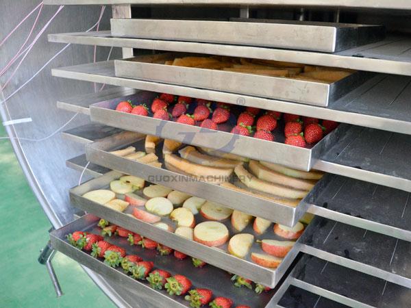 Fruit freezer drying machine
