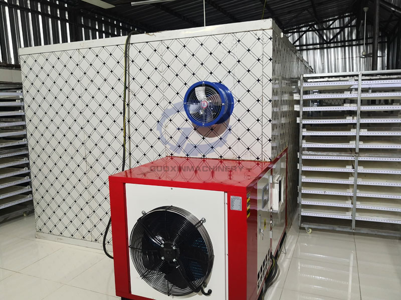 Heat pump mango dryer