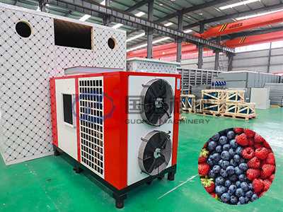 Berries Dryer Machine