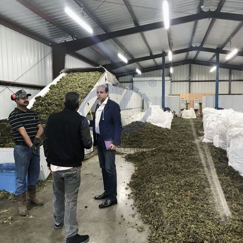 Hemp drying machine in USA