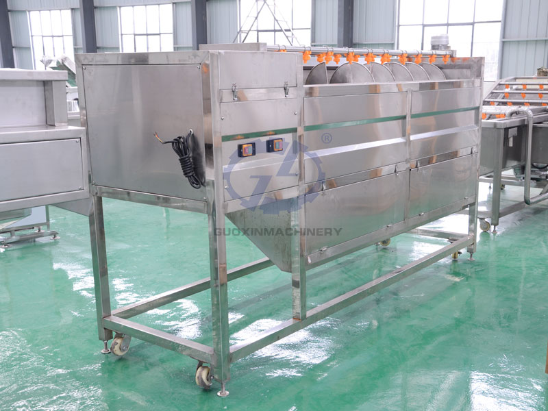 Continuous cleaning and peeling machine