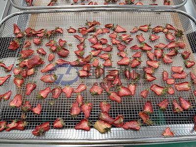 Berries Dryer