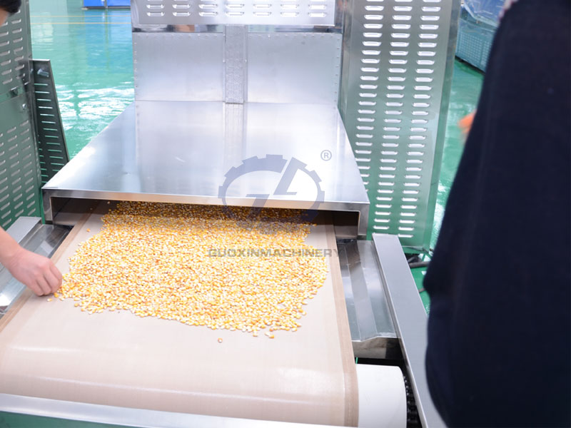 Grain Microwave Drying and Curing Machine