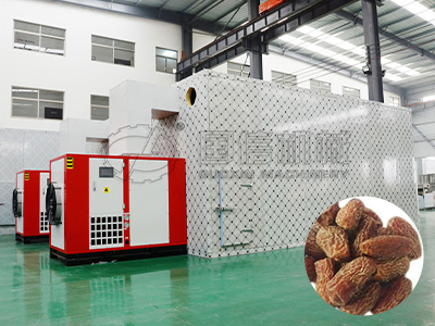 Dates Drying Machine